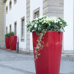 Trevia Plantenbakken
